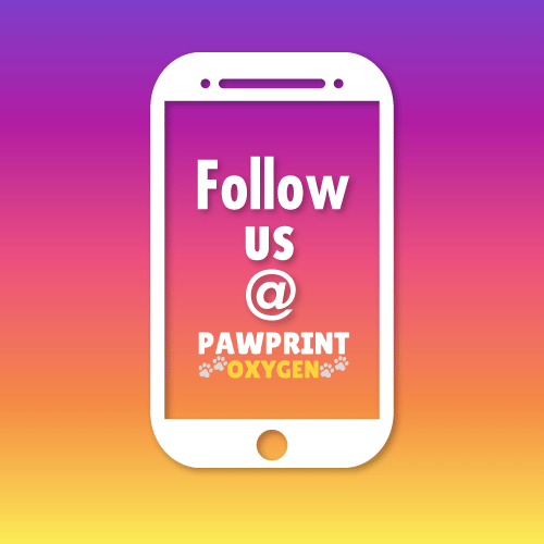 Follow Pawprint Oxygen on Instagram and Facebook