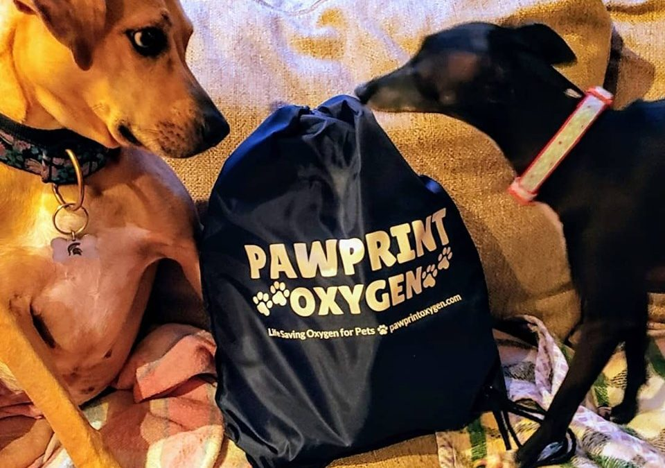 Venturing Vets On Board With Pawprint Oxygen
