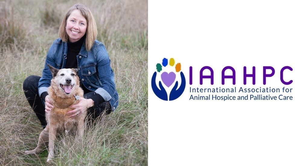 Insights into the Growing Field of Veterinary Hospice and Palliative Care
