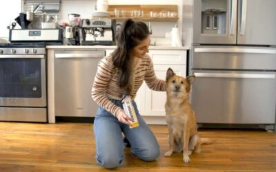 Oxygen Use for Respiratory Conditions in Pets