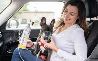 On The Go with Pawprint Oxygen Canisters!
