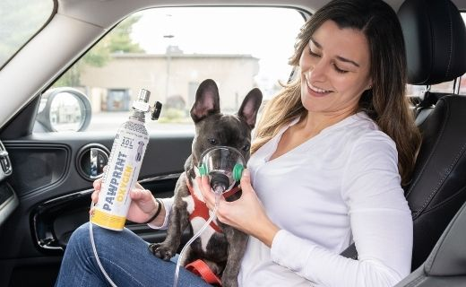 On The Go with Pawprint Oxygen